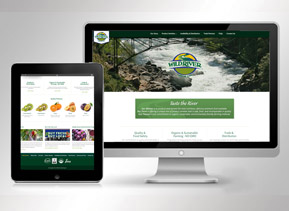 wildriver-web-design